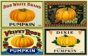 PumpkinCanningLabels2-300